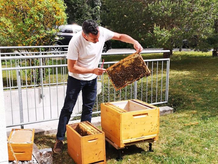die fleißigen Bienchen der BHB
